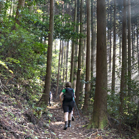 Walking trail, Kumano Kodo